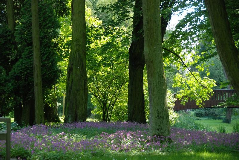ショパン生家の美しい庭、ワルシャワ郊外